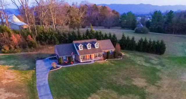 1416 Foxfire Circle, Seymour, TN 37865 (#1025124) :: SMOKY's Real Estate LLC