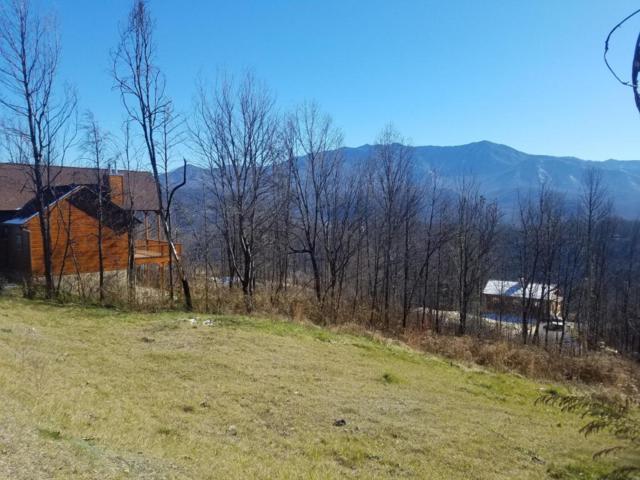715 Bear Walk Way, Gatlinburg, TN 37738 (#1025278) :: SMOKY's Real Estate LLC