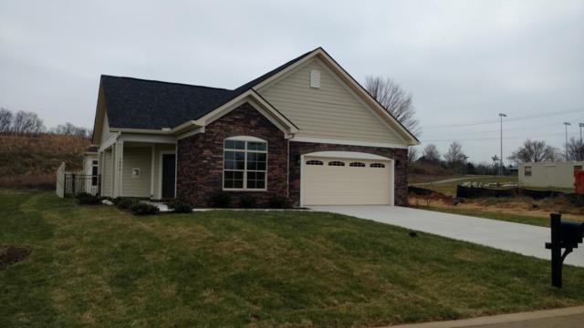 1056 Pryse Farm Blvd, Knoxville, TN 37934 (#1025392) :: SMOKY's Real Estate LLC