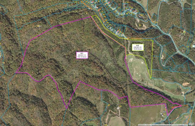 Red Cedar Ridge Rd, Sevierville, TN 37876 (#1025555) :: Shannon Foster Boline Group