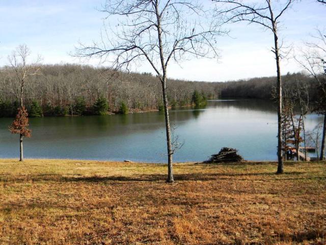 441 Otter Creek Lane, Crossville, TN 38571 (#1025884) :: Shannon Foster Boline Group