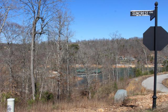 Lot 207 Suncrest Cove, LaFollette, TN 37766 (#1026093) :: Shannon Foster Boline Group