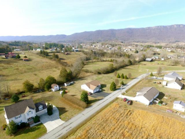 Martin Lane, LaFollette, TN 37766 (#1026188) :: Billy Houston Group