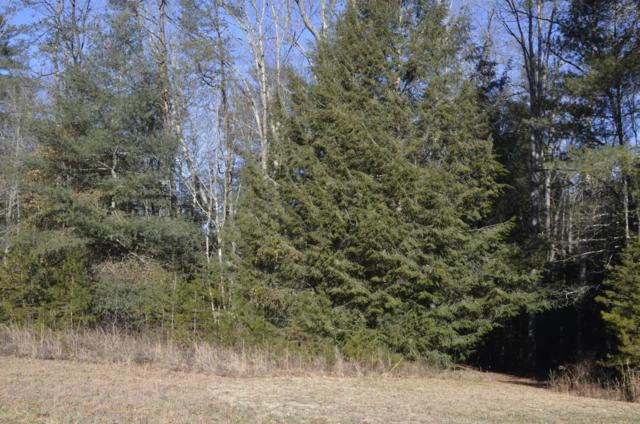Lot 10 White Creek Loop, Deer Lodge, TN 37726 (#1026205) :: Billy Houston Group