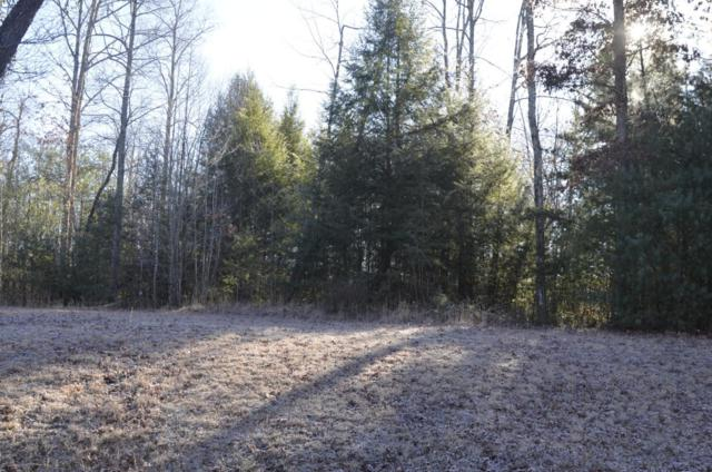 Lot 30 White Creek Loop, Deer Lodge, TN 37726 (#1026209) :: Billy Houston Group