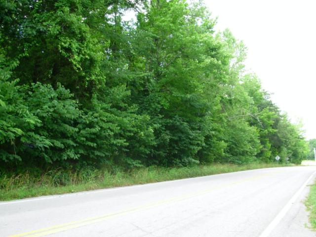 Lot 1 & 2 River Road Rd, Decatur, TN 37322 (#1026362) :: Billy Houston Group