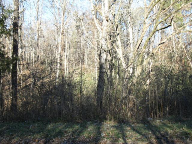 Sequoyah South Drive, Friendsville, TN 37737 (#1026479) :: Billy Houston Group
