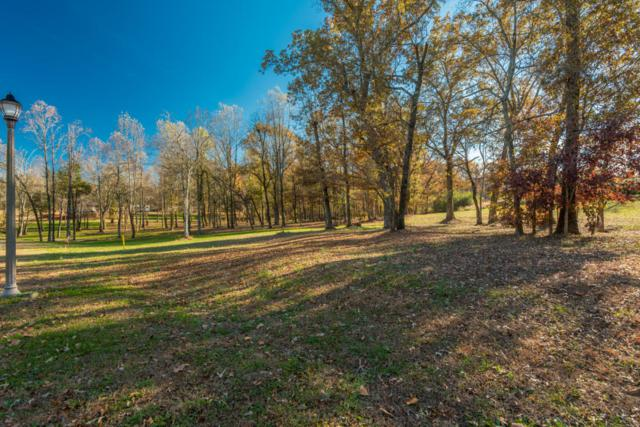 Lot 12 Walden Grove Rd, Sweetwater, TN 37874 (#1026696) :: Shannon Foster Boline Group