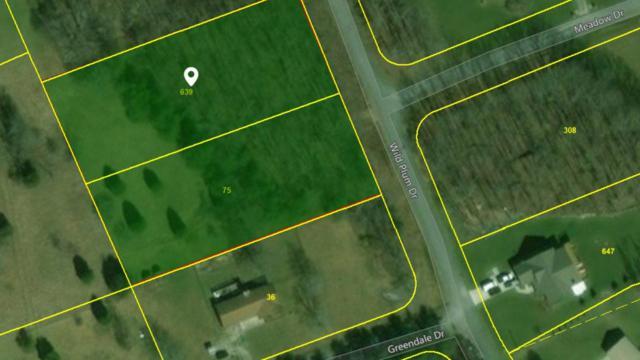 Wild Plum Drive, Crossville, TN 38555 (#1026698) :: Billy Houston Group