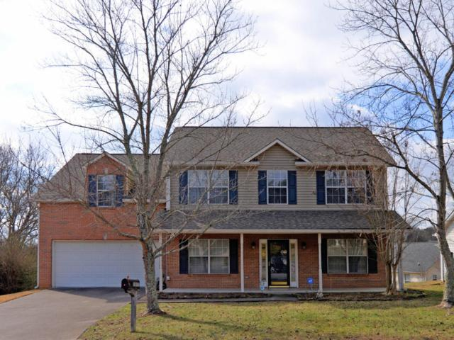 1011 Rolling Meadows Lane, Knoxville, TN 37932 (#1027083) :: Billy Houston Group
