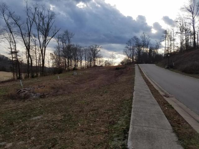 Park Meade, Oak Ridge, TN 37830 (#1027154) :: Shannon Foster Boline Group