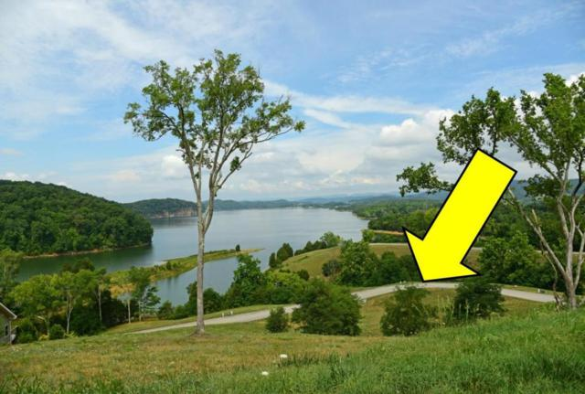 6360 Coves Edge Tr, Russellville, TN 37860 (#1027290) :: Billy Houston Group