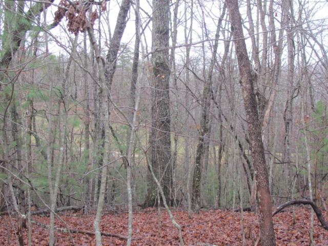 Forest Hill Drive, Fairfield Glade, TN 38558 (#1027377) :: Billy Houston Group