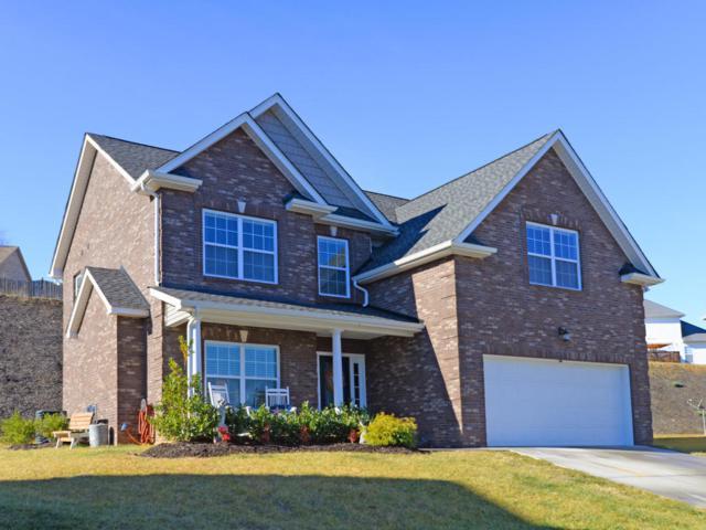 2901 Cambridge Shores Lane, Knoxville, TN 37938 (#1027454) :: Billy Houston Group