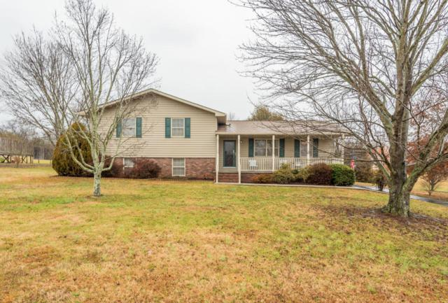 7720 Andersonville Pike, Knoxville, TN 37938 (#1027481) :: Billy Houston Group