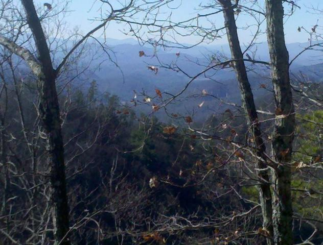 Red Maple Ln- Lot 19,20,21, Sevierville, TN 37876 (#1027511) :: Billy Houston Group