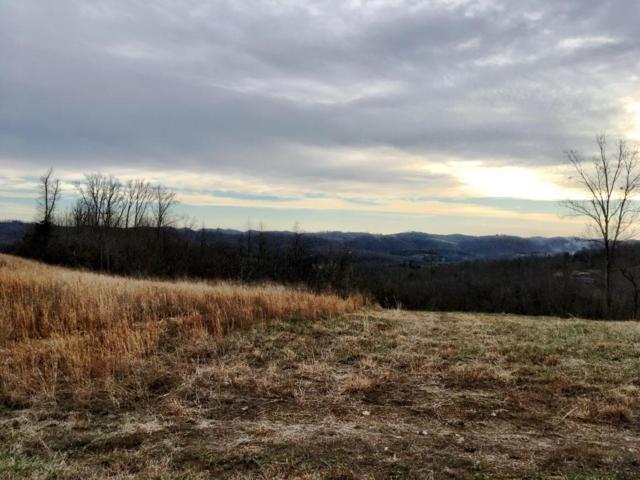 Panoramic Drive, Maynardville, TN 37807 (#1027546) :: Billy Houston Group