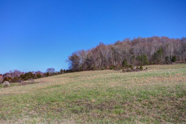 E Wolf Valley Rd, Heiskell, TN 37754 (#1027575) :: Billy Houston Group