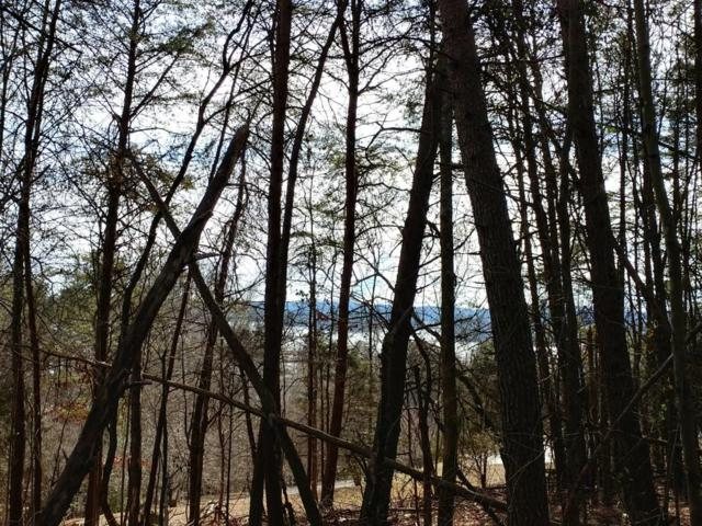 28+ Acres N Hillcrest Drive, Spring City, TN 37381 (#1027808) :: Billy Houston Group
