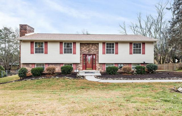 7828 Ramsgate Drive, Knoxville, TN 37919 (#1027809) :: Billy Houston Group