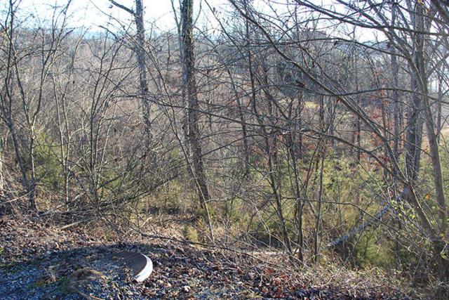 Lot 59 Stone Bridge Dr, Dandridge, TN 37725 (#1027820) :: Billy Houston Group