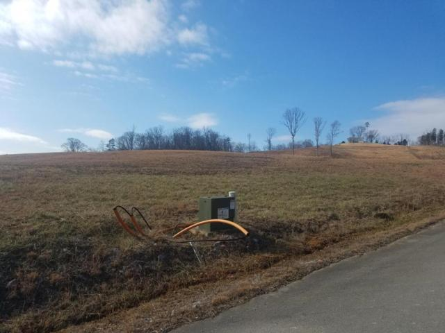 Lot 34 Cindy Court, Whitesburg, TN 37891 (#1027837) :: Billy Houston Group