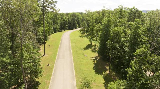 Lot 1 Hidden Ranch Way, Seymour, TN 37865 (#1027862) :: Billy Houston Group