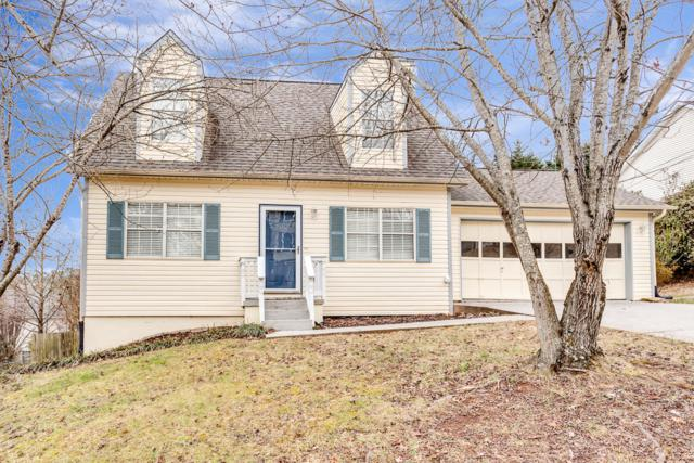 717 Shady Springs Lane, Knoxville, TN 37923 (#1027886) :: Billy Houston Group