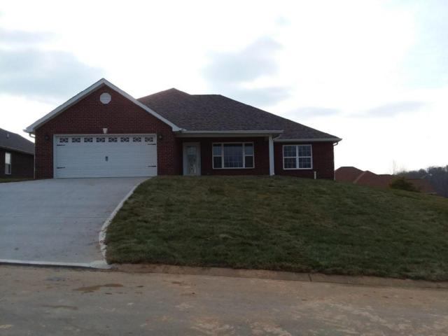 1253 Bastogne Drive, Maryville, TN 37801 (#1027982) :: Coldwell Banker Wallace & Wallace, Realtors