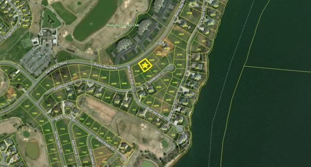 Rarity Bay Pkwy, Vonore, TN 37885 (#1028007) :: Realty Executives Associates