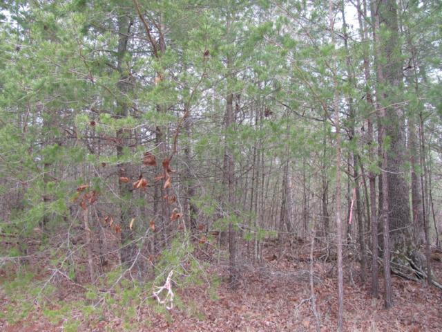 Forest View Drive, Fairfield Glade, TN 38558 (#1028048) :: Shannon Foster Boline Group