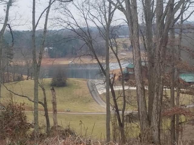 Lot 147 Cowpoke Lane, Rutledge, TN 37861 (#1028170) :: Billy Houston Group