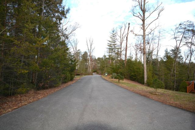Lot 36 Possum Cove Way, Sevierville, TN 37862 (#1028292) :: Billy Houston Group