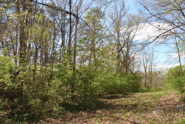 1.36 Acres W Maire Ave, Clinton, TN 37716 (#1028311) :: Billy Houston Group