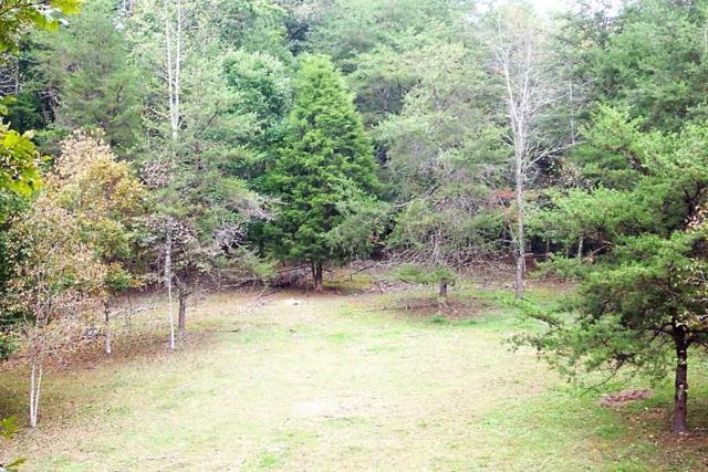 Jones Cove Rd, Cosby, TN 37722 (#1028348) :: Billy Houston Group