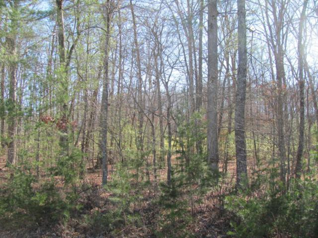 Forest Hill Drive, Fairfield Glade, TN 38558 (#1028786) :: Billy Houston Group