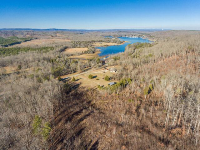 4381 River Rd, Ten Mile, TN 37880 (#1028821) :: Shannon Foster Boline Group