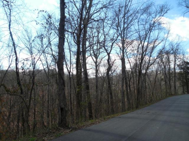 Lot 1 King Estates Rd, Sevierville, TN 37876 (#1028822) :: Billy Houston Group