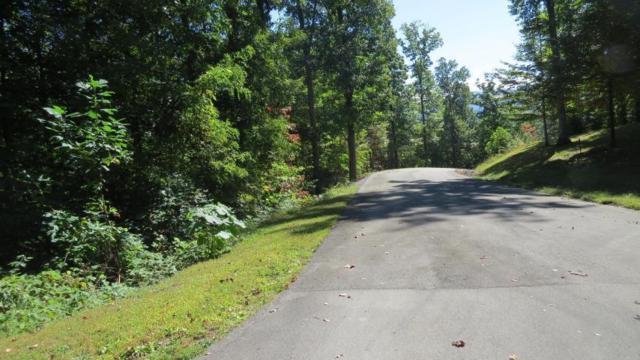 Patriot Lane, Sevierville, TN 37862 (#1028902) :: Shannon Foster Boline Group
