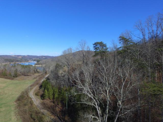 Lot 34 Bob Wright Rd, Maynardville, TN 37807 (#1029067) :: Shannon Foster Boline Group
