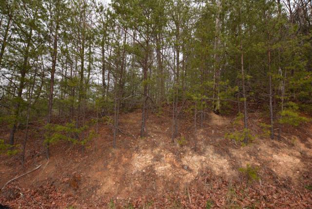 Lot 70 Big Bear Ridge Rd, Gatlinburg, TN 37738 (#1029294) :: Billy Houston Group