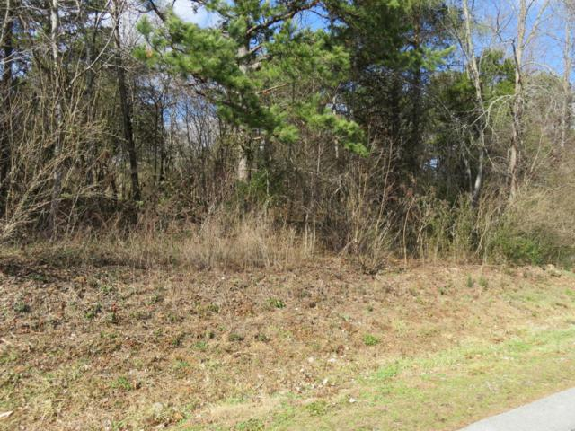Chogi Lane,  Lot 11, Loudon, TN 37774 (#1029313) :: Billy Houston Group