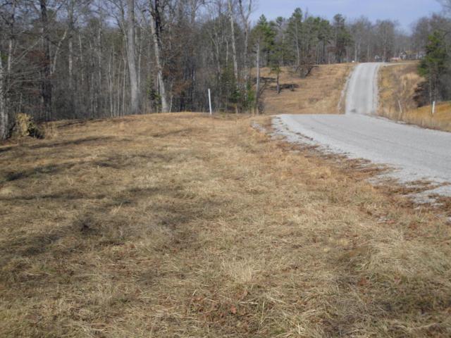 Bluebird Ridge Road Rd, Jamestown, TN 38556 (#1029479) :: Billy Houston Group