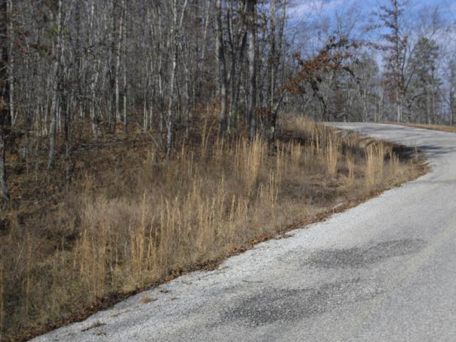 Bluebird Ridge Road Rd, Jamestown, TN 38556 (#1029483) :: Billy Houston Group