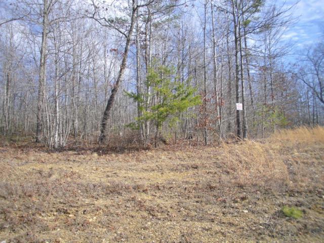 Bluebird Ridge Rd Rd, Jamestown, TN 38556 (#1029484) :: Billy Houston Group