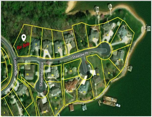 101 Shawnee Point, Loudon, TN 37774 (#1029525) :: Billy Houston Group