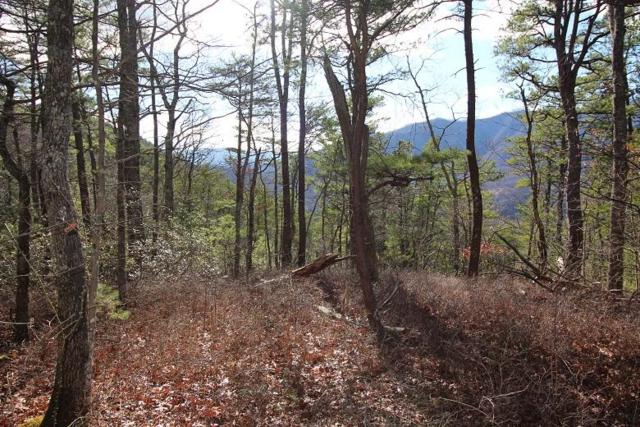 Lot 13 Little Mtn Way, Townsend, TN 37882 (#1029626) :: Billy Houston Group
