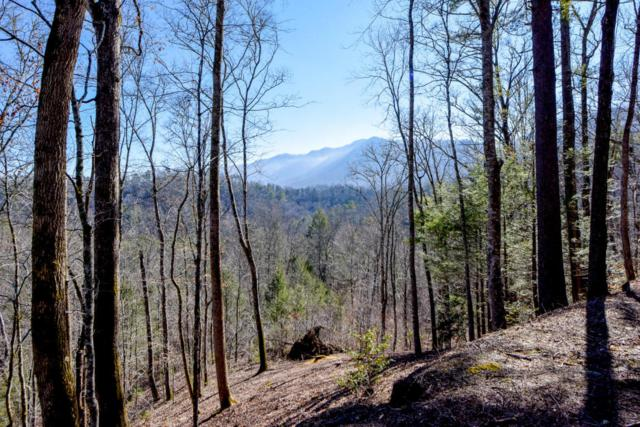 Laurel Rd, Townsend, TN 37882 (#1029634) :: Shannon Foster Boline Group