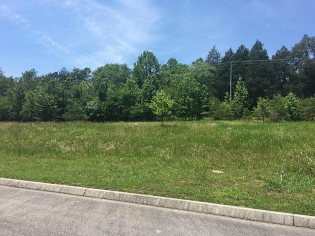 Creekside Drive, Harriman, TN 37748 (#1029665) :: Billy Houston Group