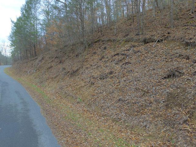 Lot 17 Bear Mountain Lane/Way, Sevierville, TN 37876 (#1029668) :: Billy Houston Group
